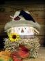 Brick Scarecrow