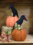 Crow Time Pumpkin